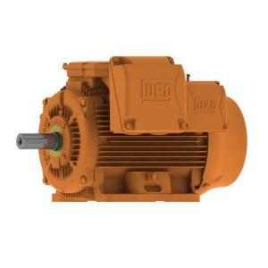 WEG mining motors